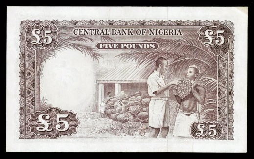Image result for nigeria pounds